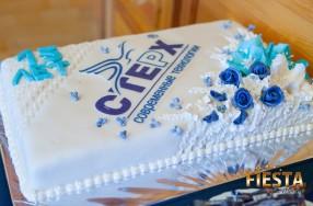 Тимбилдинг в день рождения компании «Современные технологии - «СТЕРХ»