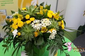 Оформление живыми цветами и воздушными шарами делового мероприятия
